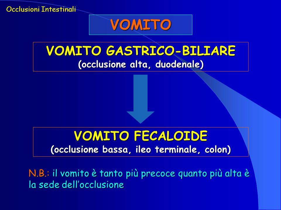 VOMITO VOMITO GASTRICO-BILIARE VOMITO FECALOIDE