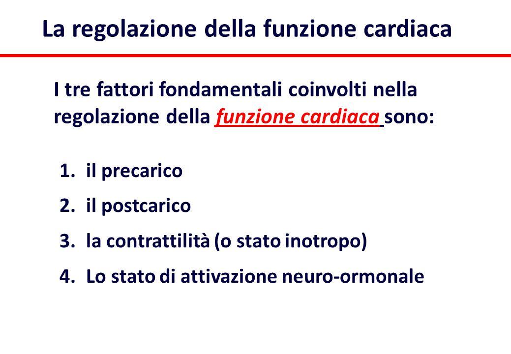 * La regolazione della funzione cardiaca