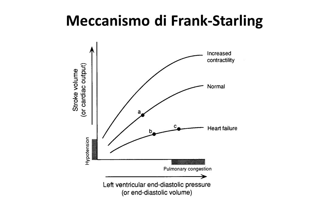 Meccanismo di Frank-Starling