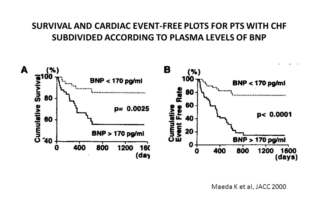 SURVIVAL AND CARDIAC EVENT-FREE PLOTS FOR PTS WITH CHF SUBDIVIDED ACCORDING TO PLASMA LEVELS OF BNP