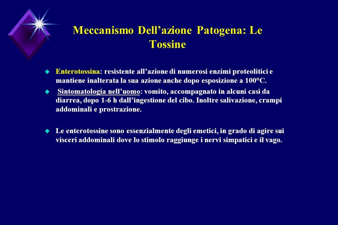 Meccanismo Dell'azione Patogena: Le Tossine