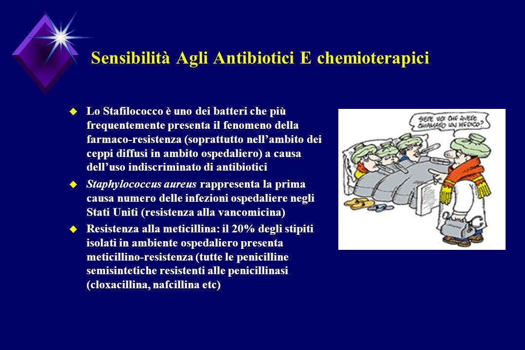 Sensibilità Agli Antibiotici E chemioterapici