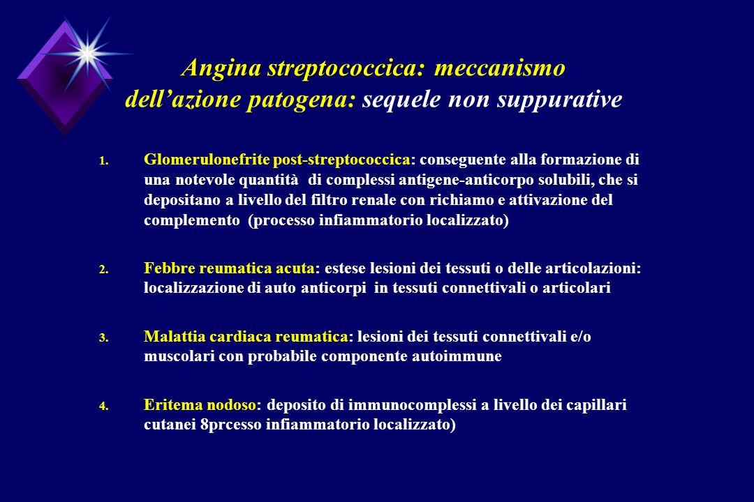 Angina streptococcica: meccanismo dell'azione patogena: sequele non suppurative