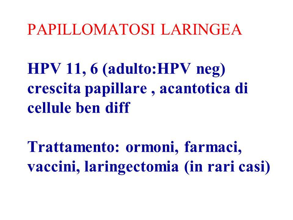 PAPILLOMATOSI LARINGEA HPV 11, 6 (adulto:HPV neg) crescita papillare , acantotica di cellule ben diff Trattamento: ormoni, farmaci, vaccini, laringectomia (in rari casi)