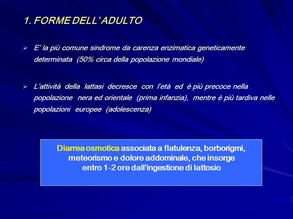 1. FORME DELL' ADULTO E' la più comune sindrome da carenza enzimatica geneticamente determinata (50% circa della popolazione mondiale)