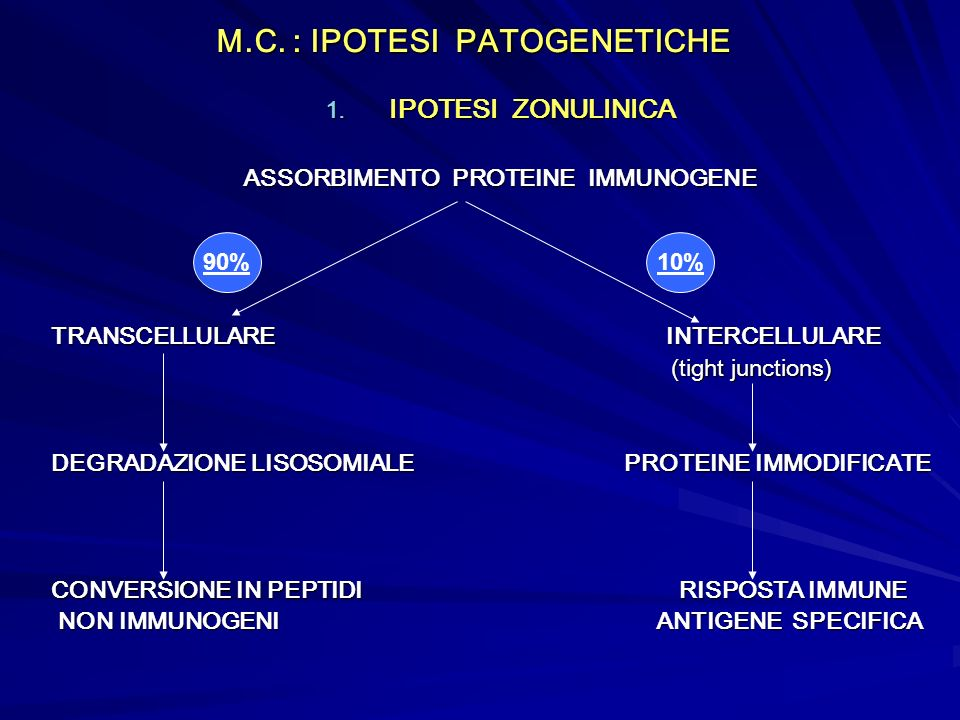 M.C. : IPOTESI PATOGENETICHE