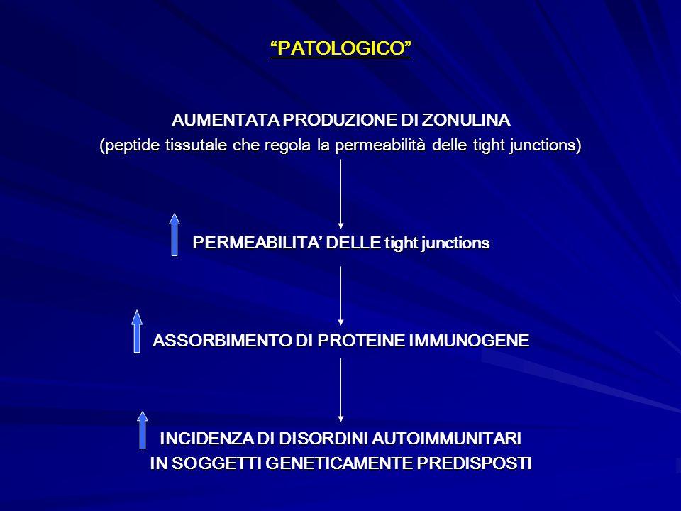 PATOLOGICO AUMENTATA PRODUZIONE DI ZONULINA