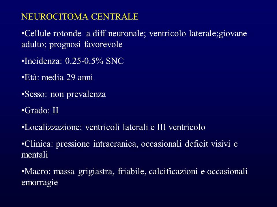 NEUROCITOMA CENTRALE Cellule rotonde a diff neuronale; ventricolo laterale;giovane adulto; prognosi favorevole.