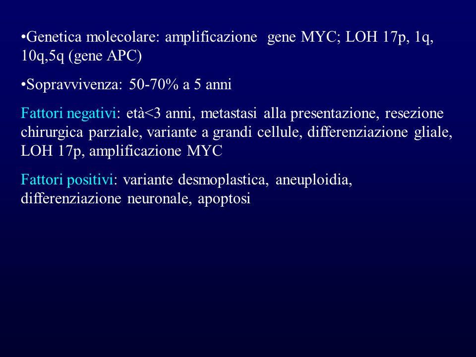 Genetica molecolare: amplificazione gene MYC; LOH 17p, 1q, 10q,5q (gene APC)