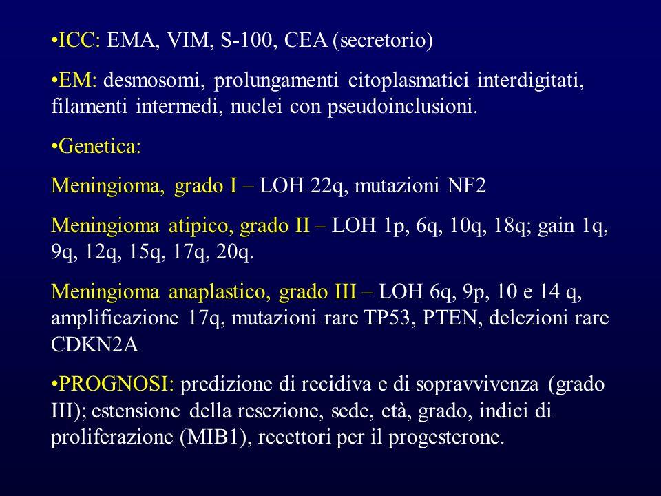 ICC: EMA, VIM, S-100, CEA (secretorio)