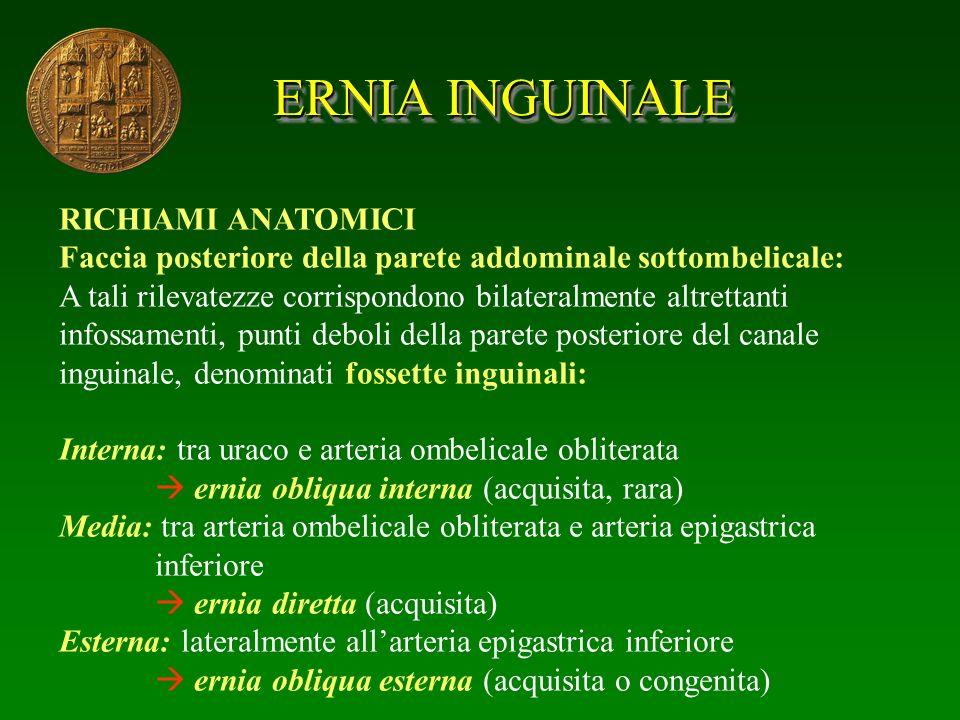 ERNIA INGUINALE RICHIAMI ANATOMICI