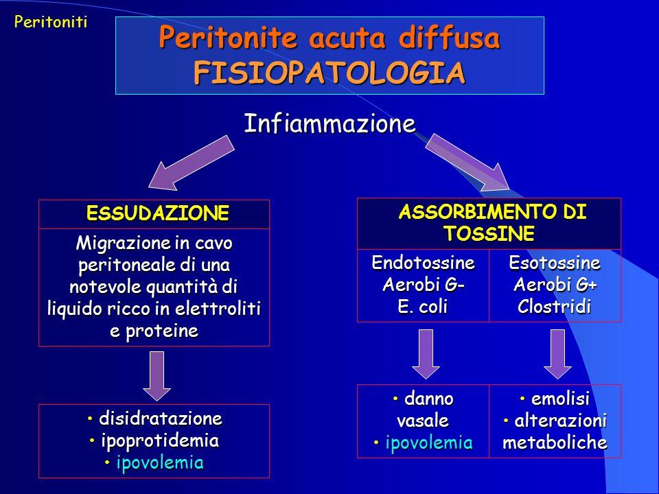 Peritonite acuta diffusa FISIOPATOLOGIA ASSORBIMENTO DI TOSSINE