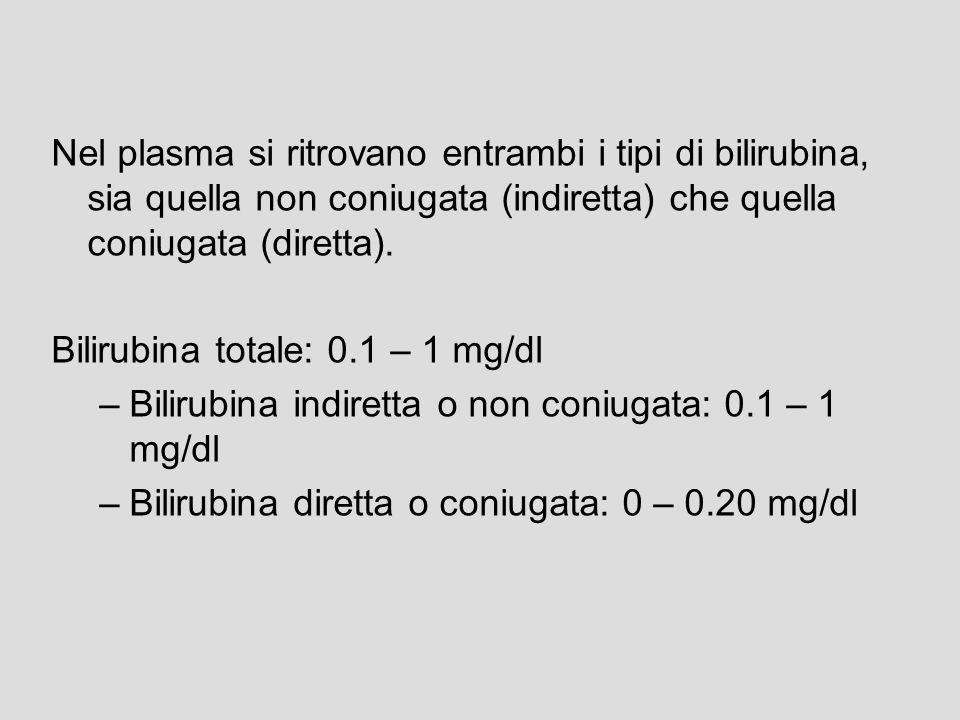 Nel plasma si ritrovano entrambi i tipi di bilirubina, sia quella non coniugata (indiretta) che quella coniugata (diretta).