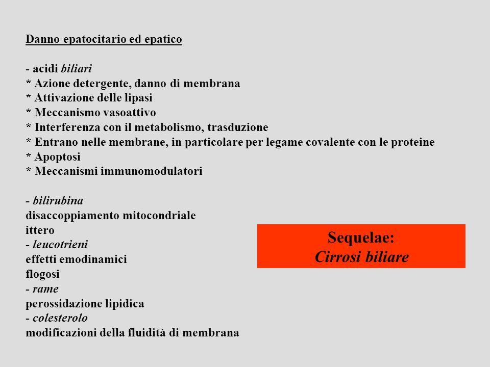 Sequelae: Cirrosi biliare