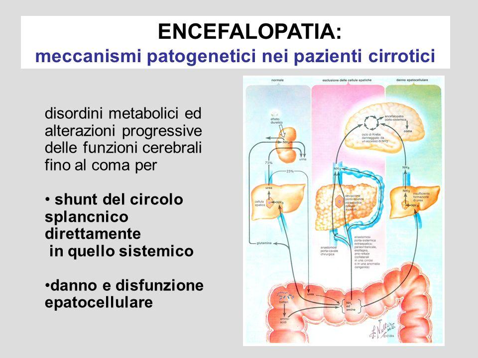 ENCEFALOPATIA: meccanismi patogenetici nei pazienti cirrotici