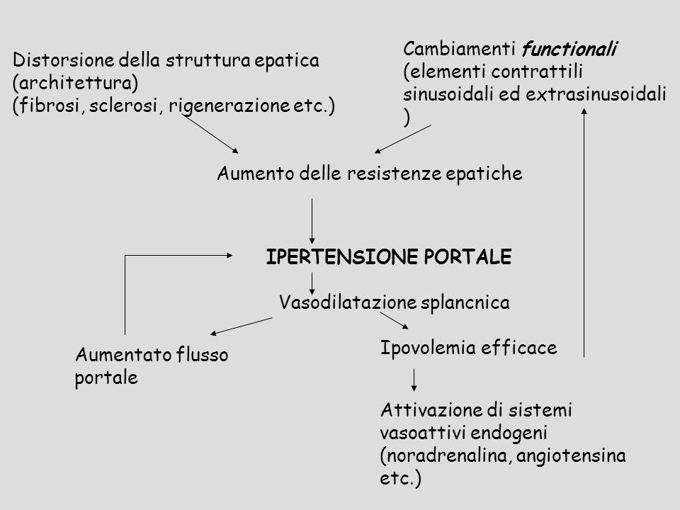 Distorsione della struttura epatica (architettura)