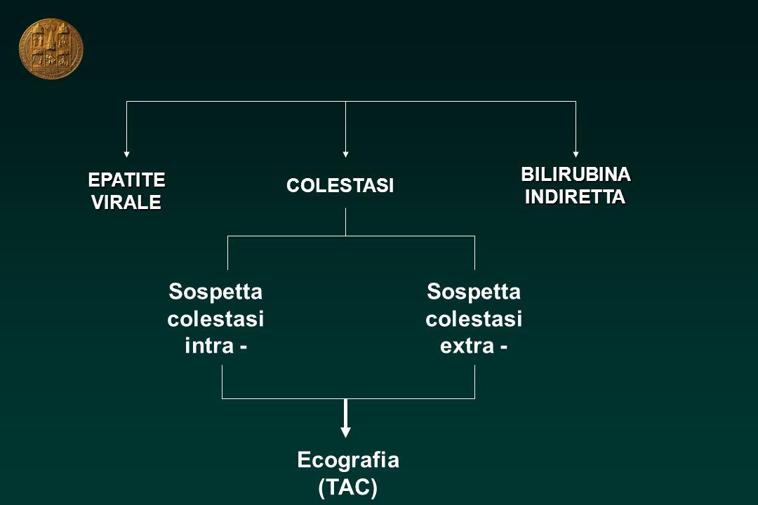 Sospetta colestasi intra - Sospetta colestasi extra - Ecografia (TAC)