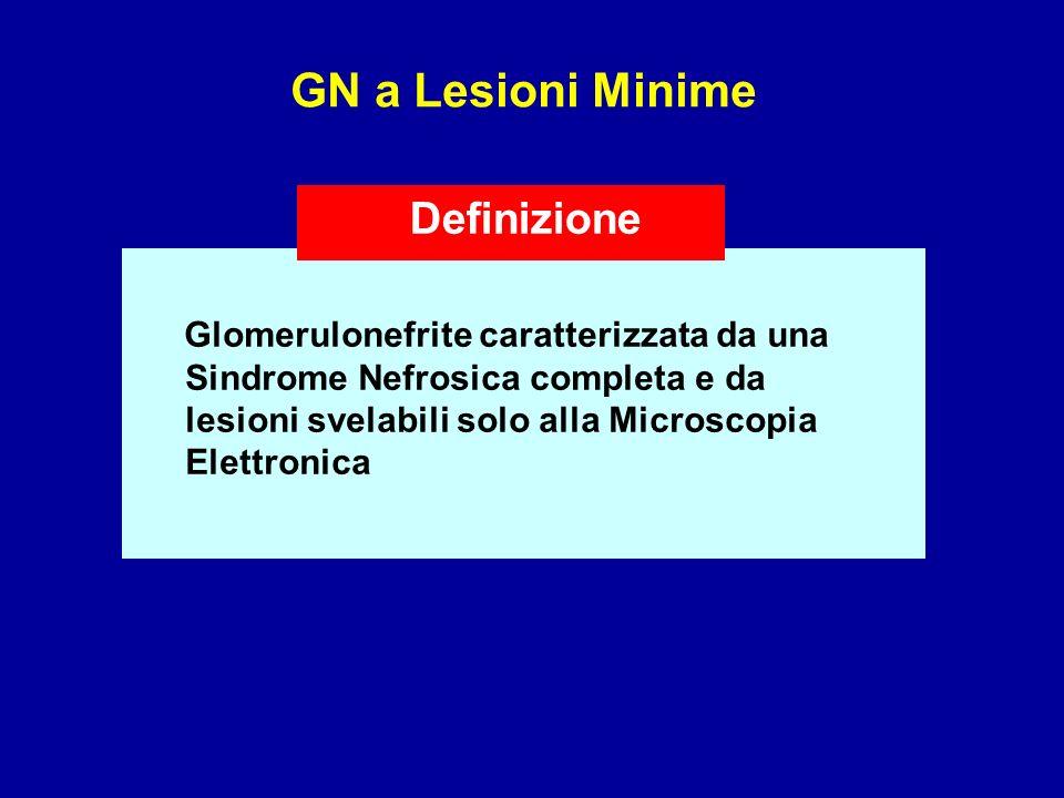 GN a Lesioni Minime Definizione