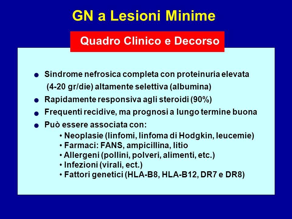 • • • • GN a Lesioni Minime Quadro Clinico e Decorso
