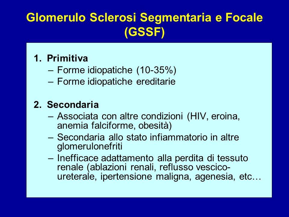 Glomerulo Sclerosi Segmentaria e Focale (GSSF)