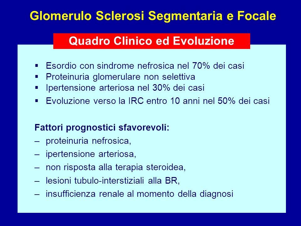 Glomerulo Sclerosi Segmentaria e Focale Quadro Clinico ed Evoluzione