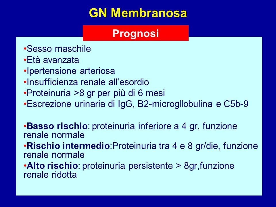 GN Membranosa Prognosi Sesso maschile Età avanzata