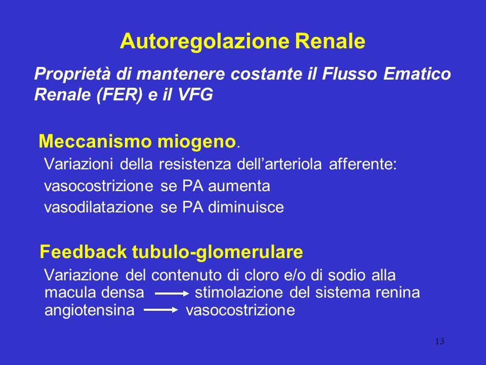 Autoregolazione Renale
