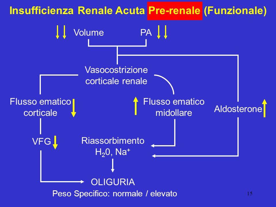 Insufficienza Renale Acuta Pre-renale (Funzionale)