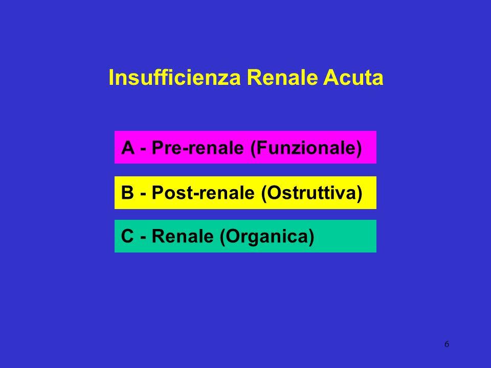 Insufficienza Renale Acuta