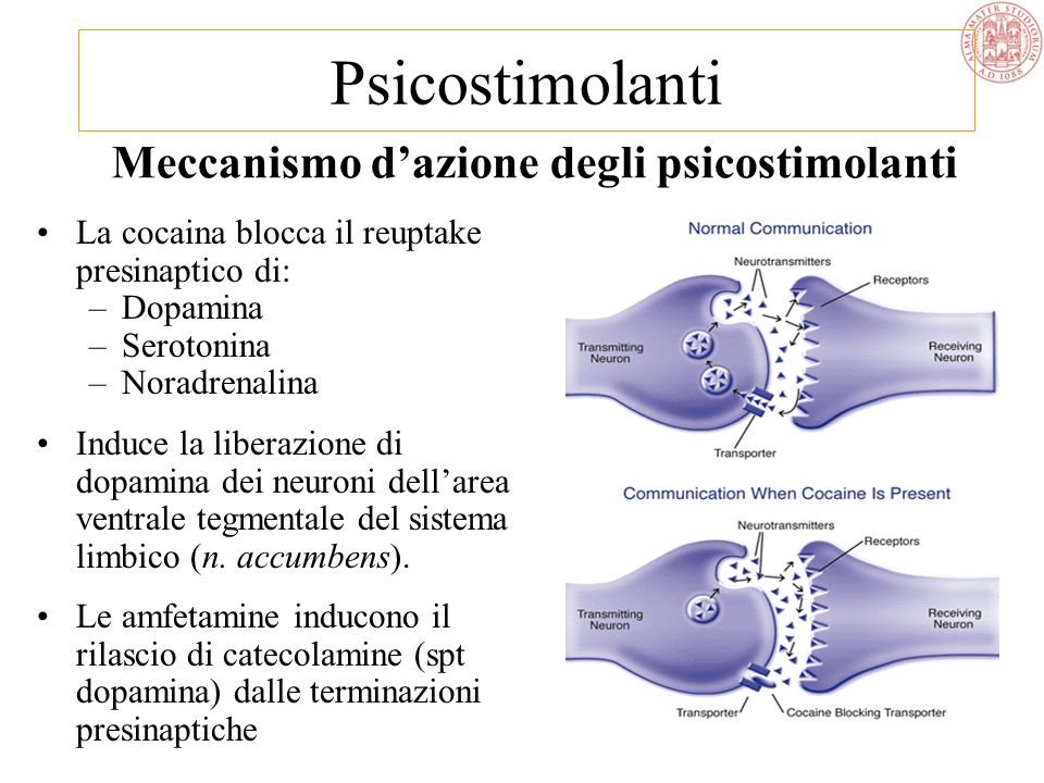 Meccanismo d'azione degli psicostimolanti
