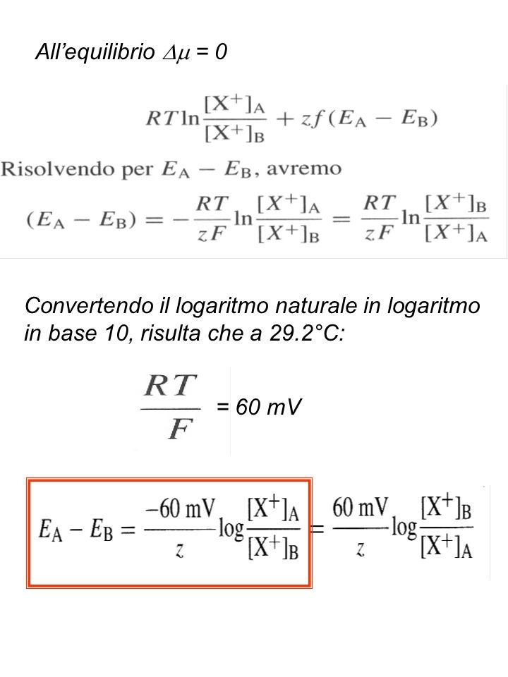 All'equilibrio  = 0 Convertendo il logaritmo naturale in logaritmo in base 10, risulta che a 29.2°C:
