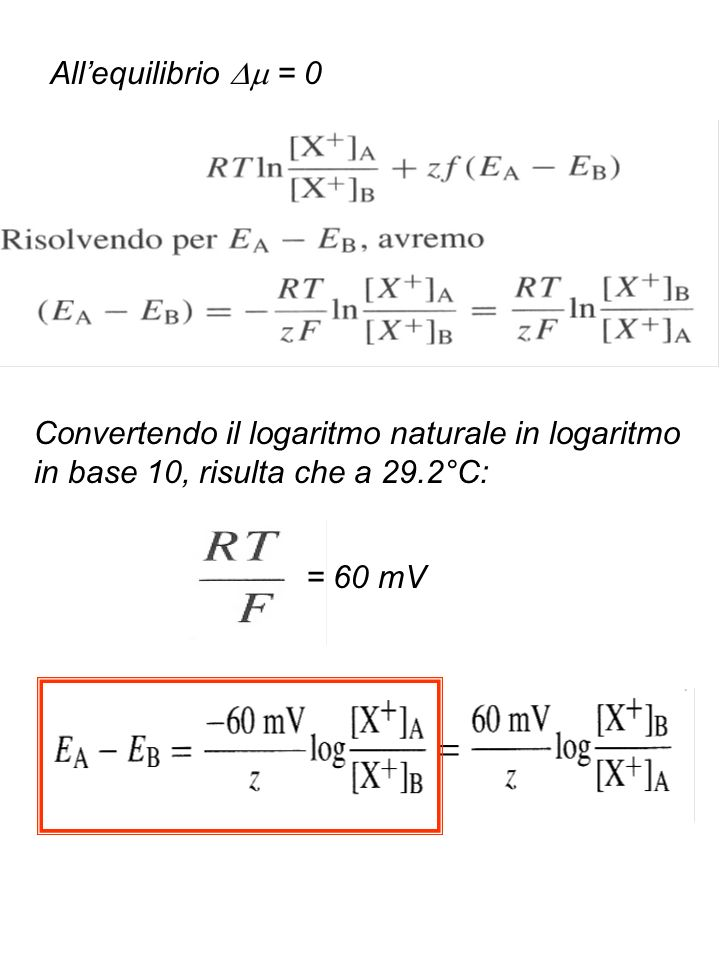 All'equilibrio  = 0Convertendo il logaritmo naturale in logaritmo in base 10, risulta che a 29.2°C: