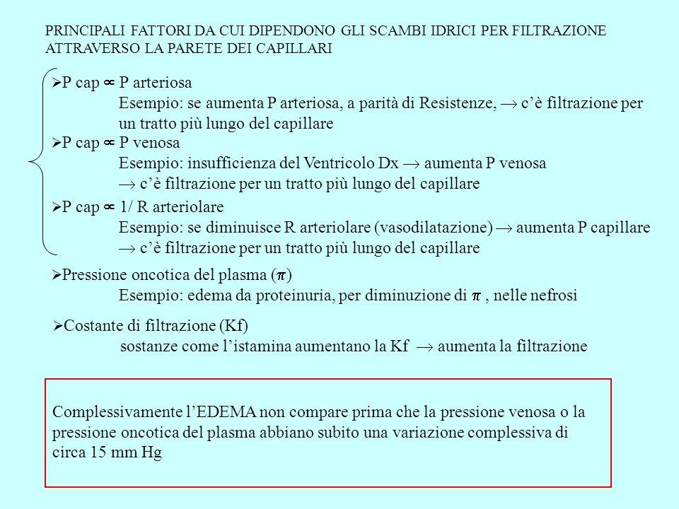 Esempio: insufficienza del Ventricolo Dx  aumenta P venosa