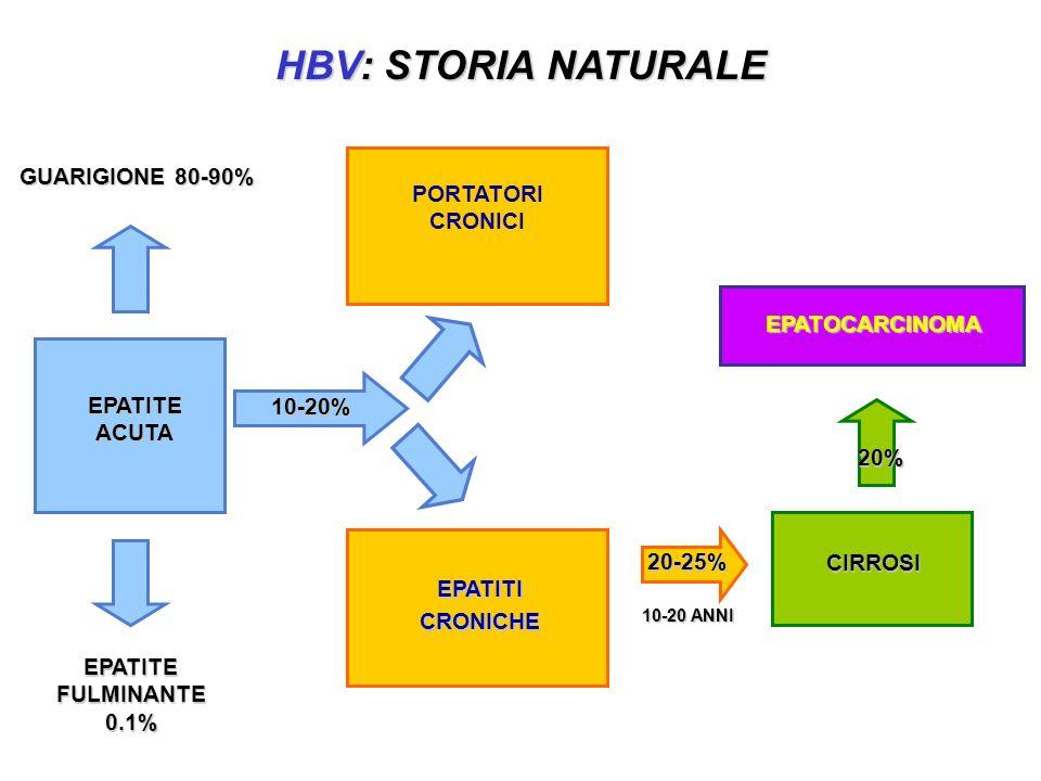 HBV: STORIA NATURALE GUARIGIONE 80-90% PORTATORI CRONICI