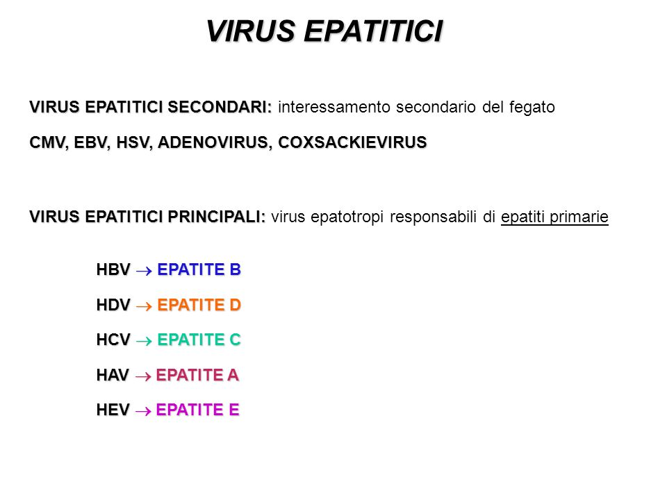 VIRUS EPATITICI VIRUS EPATITICI SECONDARI: interessamento secondario del fegato. CMV, EBV, HSV, ADENOVIRUS, COXSACKIEVIRUS.