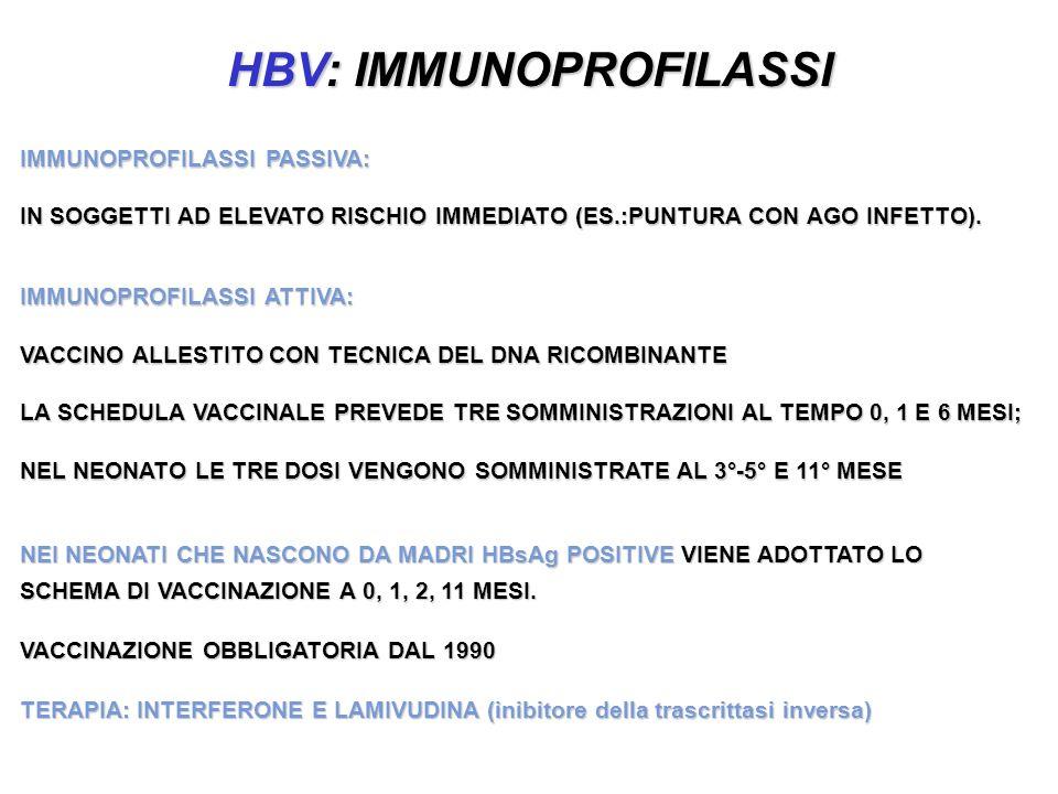 HBV: IMMUNOPROFILASSI