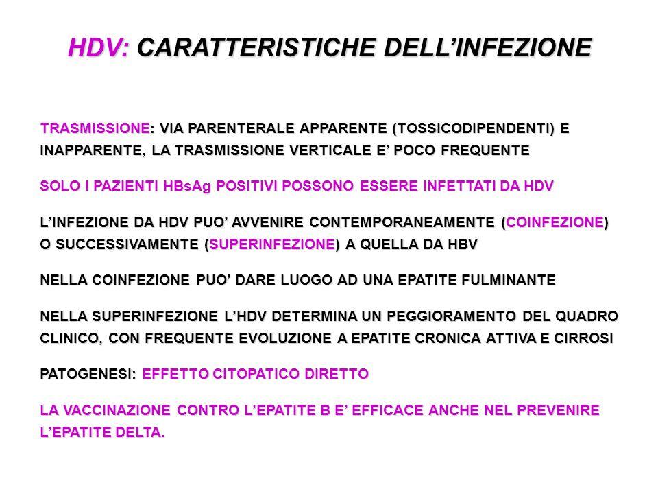 HDV: CARATTERISTICHE DELL'INFEZIONE