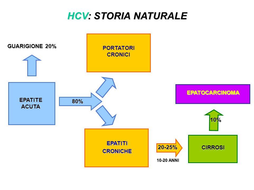 HCV: STORIA NATURALE GUARIGIONE 20% PORTATORI CRONICI EPATOCARCINOMA