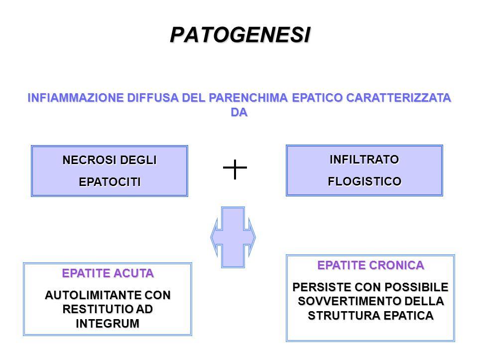 PATOGENESI INFIAMMAZIONE DIFFUSA DEL PARENCHIMA EPATICO CARATTERIZZATA DA. NECROSI DEGLI EPATOCITI.