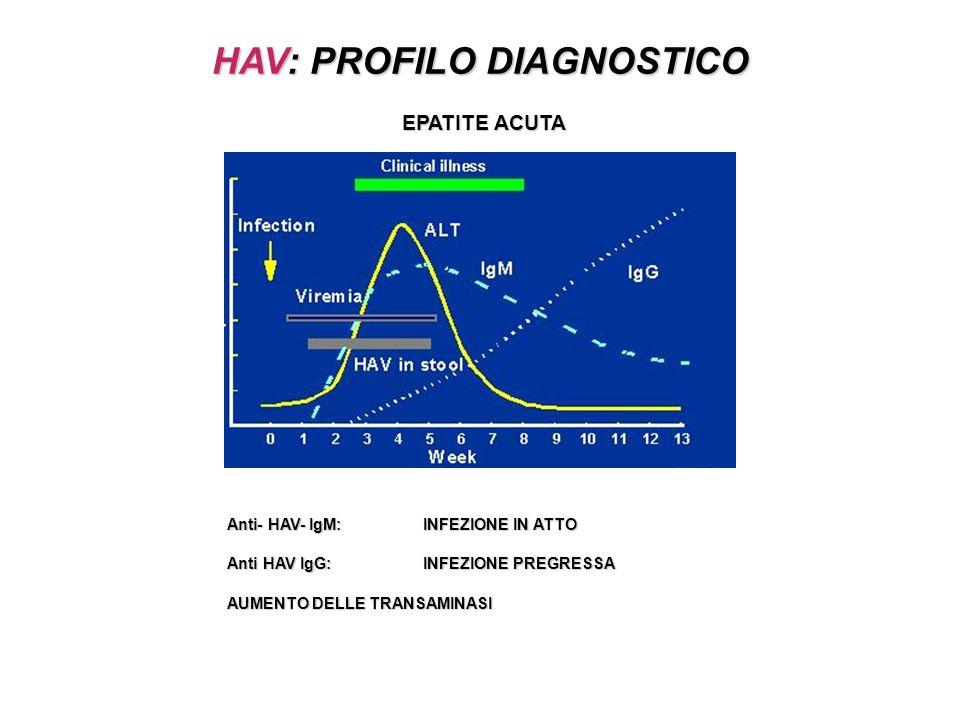 HAV: PROFILO DIAGNOSTICO