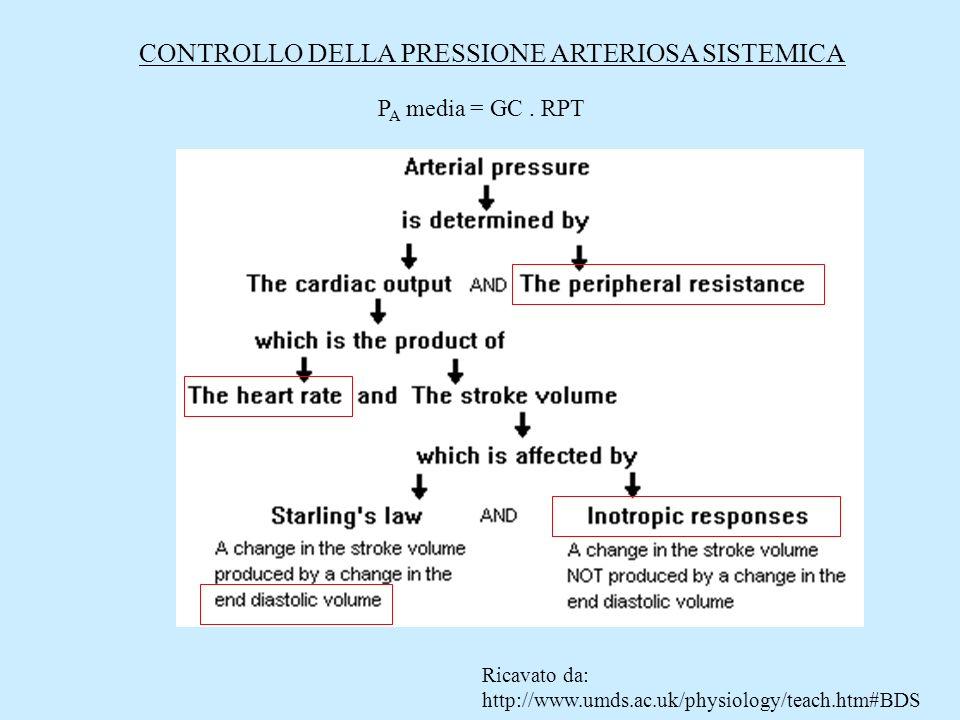 CONTROLLO DELLA PRESSIONE ARTERIOSA SISTEMICA