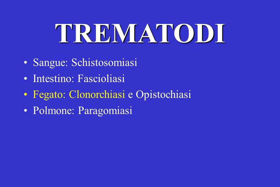 TREMATODI Sangue: Schistosomiasi Intestino: Fascioliasi