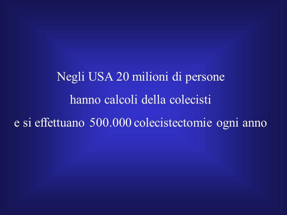 Negli USA 20 milioni di persone hanno calcoli della colecisti