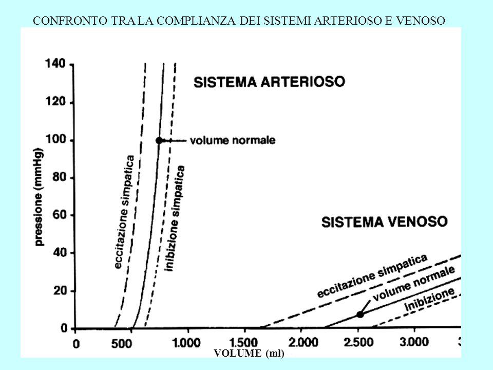 CONFRONTO TRA LA COMPLIANZA DEI SISTEMI ARTERIOSO E VENOSO