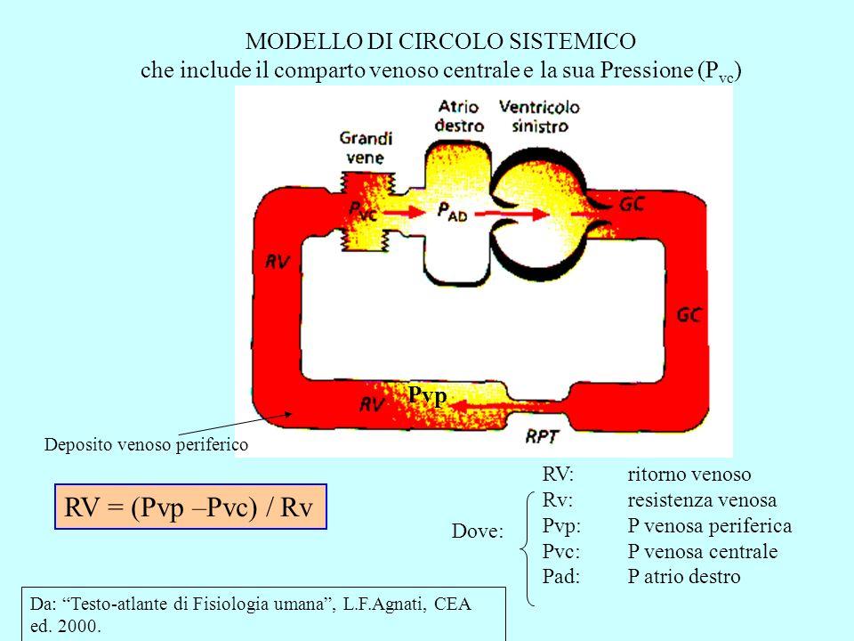 RV = (Pvp –Pvc) / Rv MODELLO DI CIRCOLO SISTEMICO