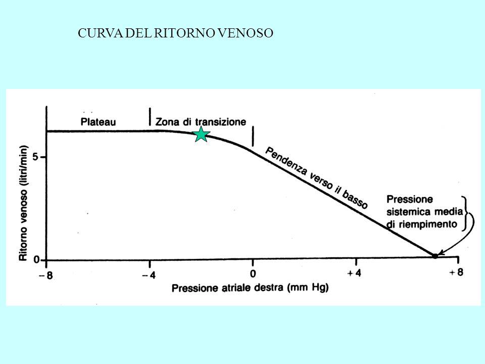 CURVA DEL RITORNO VENOSO