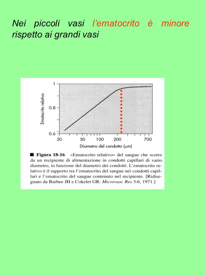 Nei piccoli vasi l'ematocrito è minore rispetto ai grandi vasi