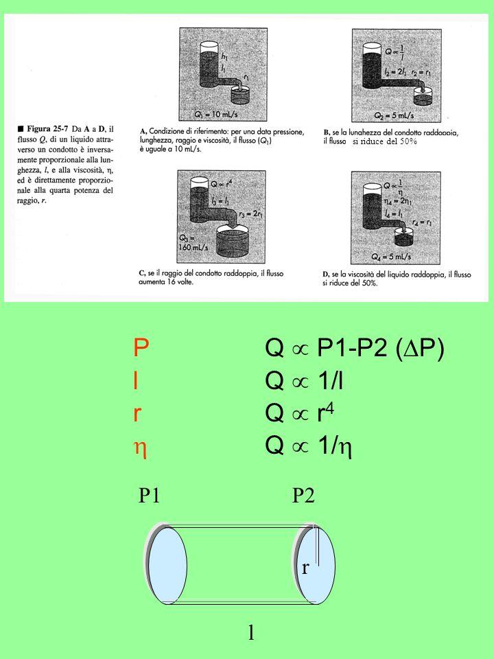 P Q  P1-P2 (P) l Q  1/l r Q  r4  Q  1/ P1 P2 r l