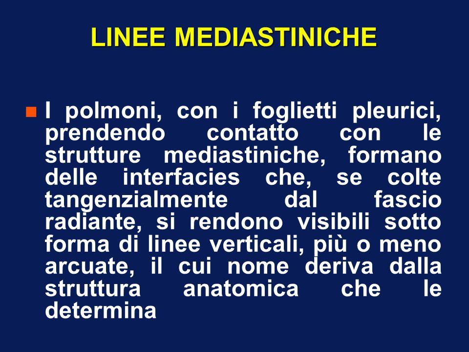 LINEE MEDIASTINICHE