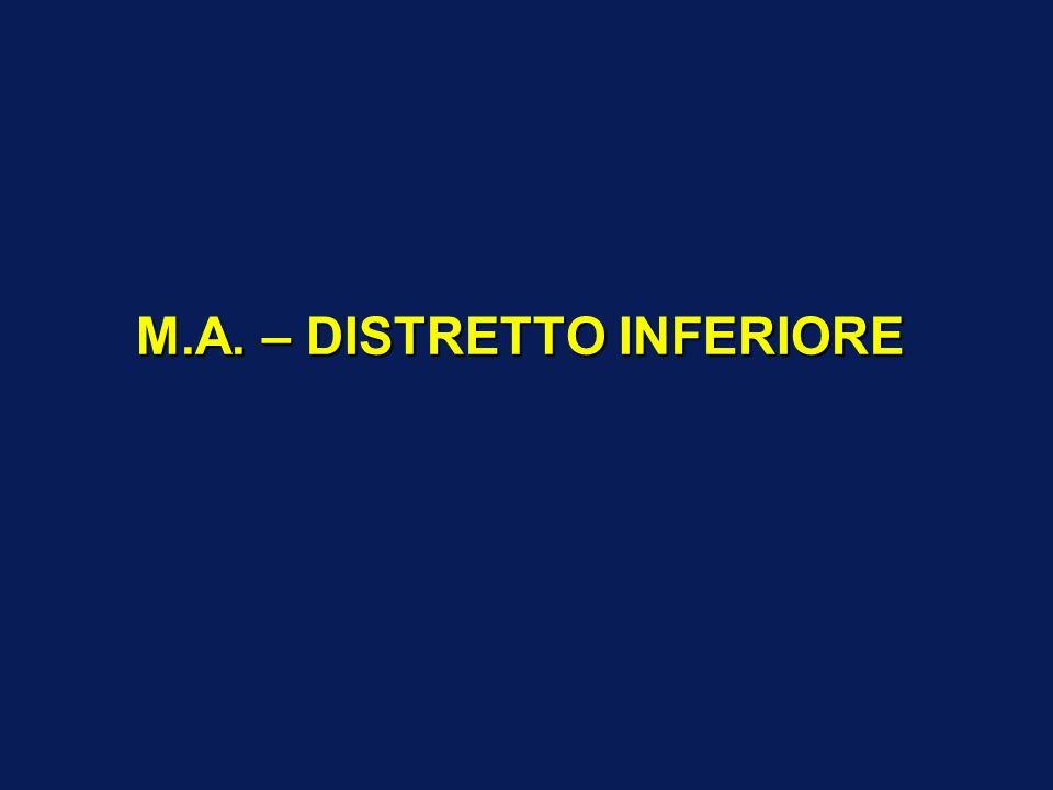 M.A. – DISTRETTO INFERIORE